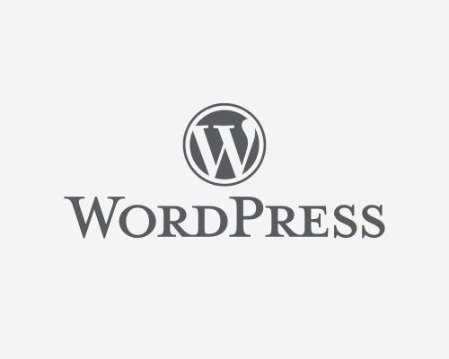 Motivos por los que WordPress es un excelente CMS para el posicionamiento SEO
